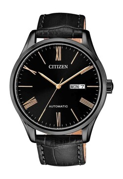 Citizen Mechanical