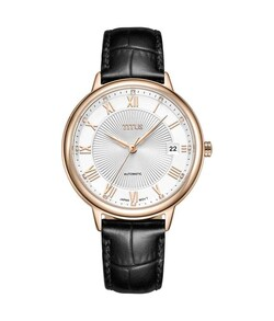 Exquisite 3 Hands Date Mechanical Leather Watch