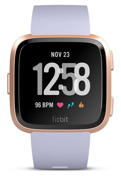 Fitbit (FB505RGABLV)