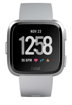 Fitbit (FB505SRGY)